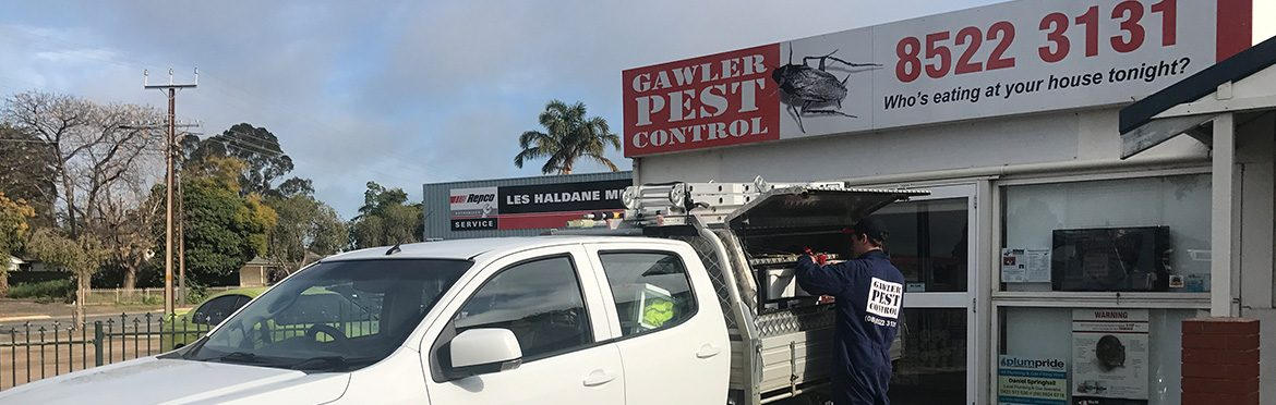 About-Us-Banner-Gawler-Pest-Control-1170x372