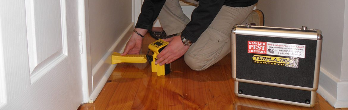 Gawler-Pest-Control-Home-Residential-Solutions