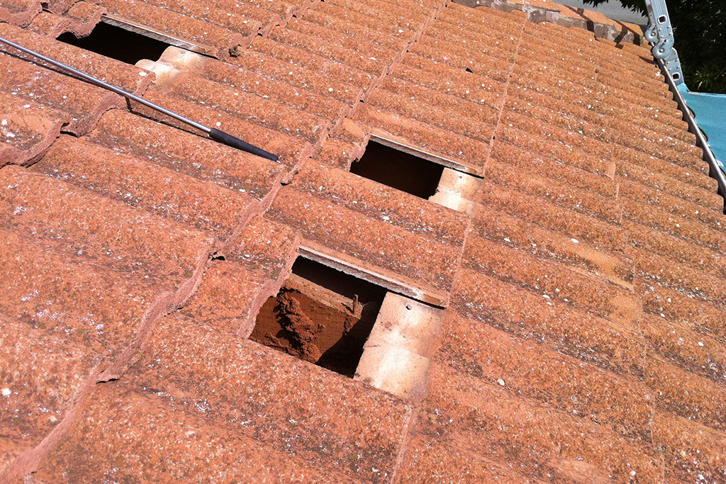 Gawler-Pest-Control-Residential-Solutions_0002_Termites in roof void 2