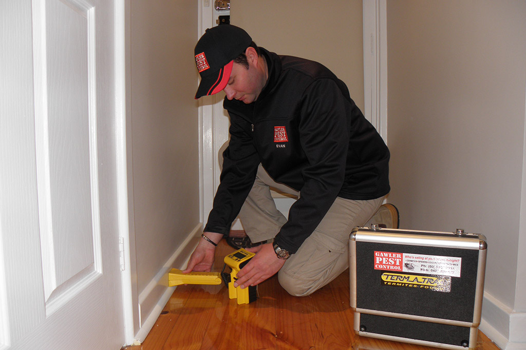 Gawler-Pest-Control-Residential-Solutions_010