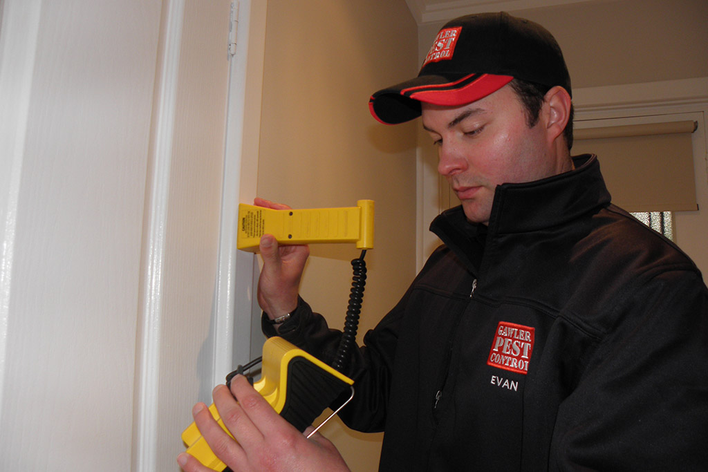Gawler-Pest-Control-Residential-Solutions_011